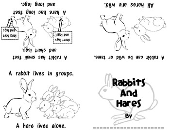 Non-Fiction Foldable Emergent Readers: Rabbits! ~Set of 6