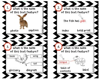 Non-Fiction Text Features Task Cards FREEBIE!!!!! by Betty