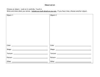 Observation Worksheet By Beth Rubenstein