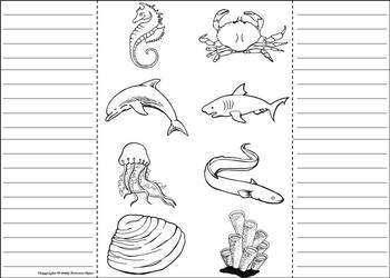 Ocean Animals Activity: Interactive Notebook Foldable