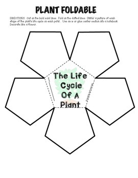 PLANT LIFE CYCLE Mini Reader, Vocabulary Cards, & Foldable