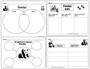 All About Pandas, Writing Prompts, Graphic Organizers