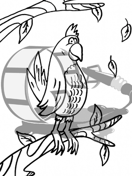 Parrot Coloring Page By Art At Heart Classroom Tpt