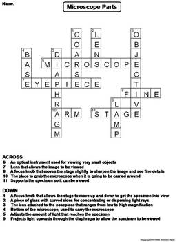 Parts of a Microscope Worksheet/ Crossword Puzzle by