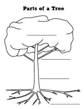 Parts of a Plant and Parts of a Tree Graphic Organizer by