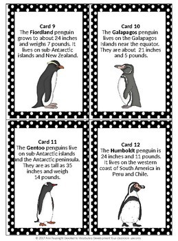 Penguin Scavenger Hunt with data collection and graphs by