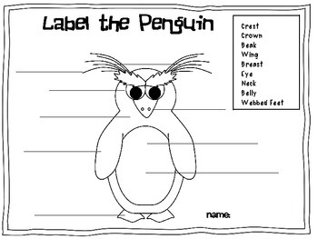 Penguins: Reading and Writing Informational Text/Common
