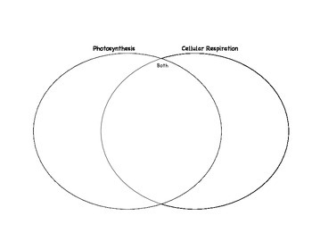 photosynthesis vs cellular respiration difference between