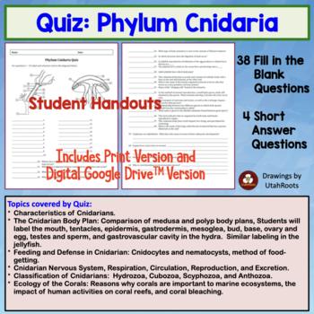 Phylum Cnidaria (hydra, jellyfish) quiz or homework by Amy