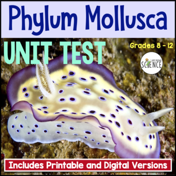 Phylum Mollusca Clam Mollusk Test By Amy Brown Science