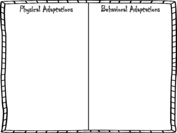 Physical and Behavioral Adaptation Sorting Activity by