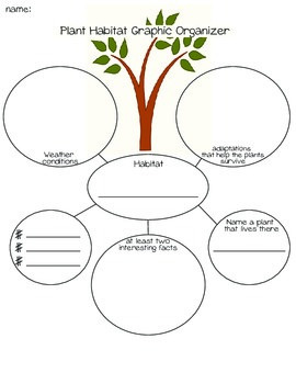 Plant Habitiat Graphic Organizer and Writing Prompt by