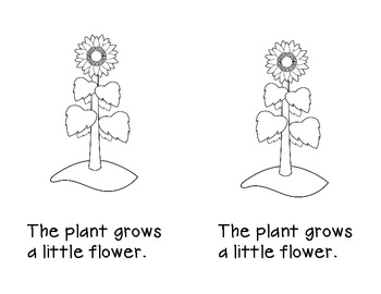 Plant Life Cycle Emergent Reader and Retelling Cards by
