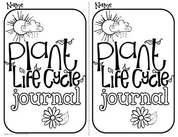 Plant Life Cycle {freebie} by A Burst of First by Deirdre