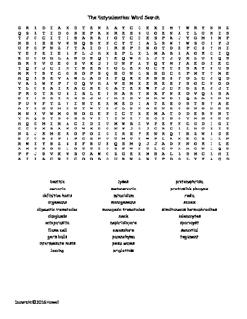 Platyhelminthes Vocabulary Word Search for Invertebrate