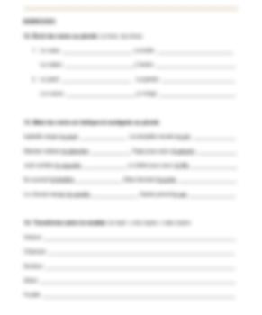 French Grammar Exercises : Pluriel des Noms (Plural of
