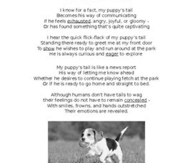 Poem Reading Passage My Puppys Tail