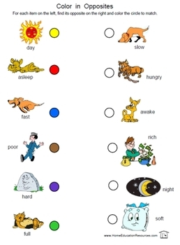 PreK K Opposites Worksheets By Fran Lafferty Teachers
