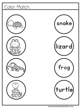 Preschool Amphibian and Reptile Theme Unit Printables by