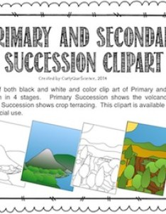 Primary and secondary succession teaching resources teachers pay also rh teacherspayteachers