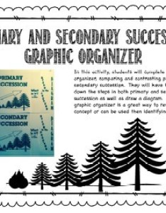 Primary and secondary succession graphic organizer also teaching resources rh teacherspayteachers