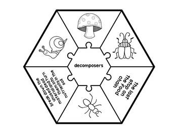 Producer Consumer Decomposer Activity BUNDLE by JH Lesson