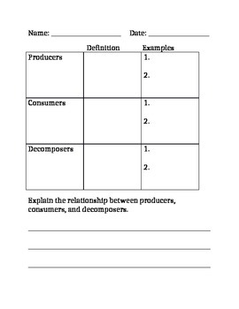 Producers Consumers Amp Decomposers Worksheet By Creating
