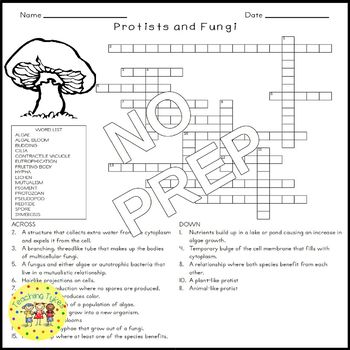 Fungi Worksheet Answer Key Coloring Pages