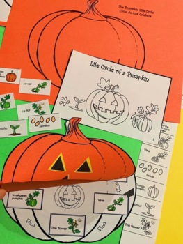 Pumpkin Life Cycle Emergent Reader & activity sheet in