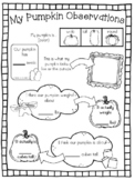 Science Observation Recording Sheet Teaching Resources
