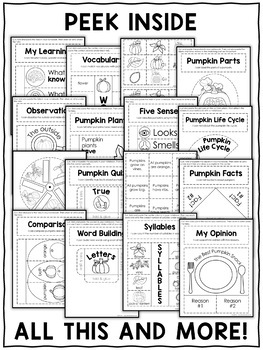 Pumpkin Interactive Notebook Activities by Nicole and