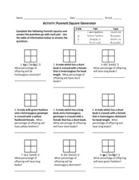 Punnett Square Generator Worksheet by Haney Science ...