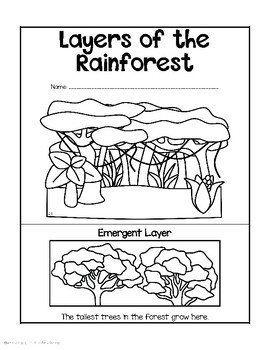 Rainforest Animals Mini Books by Staying Cool in the
