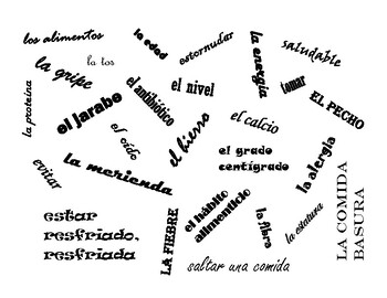 Realidades 3 Vocabulary Ch. 3A Fly Swatter by Angela