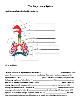 respiratory system blank diagram to label digital power meter wiring labeling and cloze worksheet by jer520 tpt