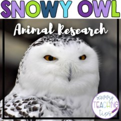 Snowy Owl Adaptations Diagram Fujitsu Ten Audio Wiring Wildlife Classroom Series Designed By Karen Brazell Produced Nonfiction Animal Research