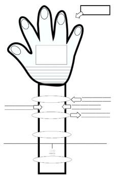 Editing, Revising, & Essay Graphic Organizer Practice