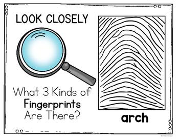 Fingerprints! A Science Unit for Kindergarten and First