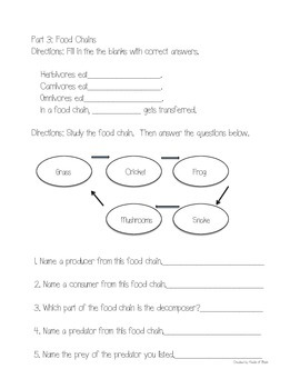 Science Fusion Grade 3 Unit 4 Study Guide and Test with