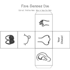 Five Senses Diagram 10 Switch Box Wiring Science Unit 2 By Teaching The Bayou Tpt