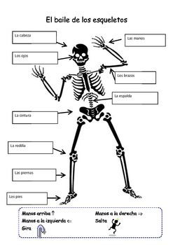 Skeleton Body Parts with Spanish Song by Habla Language