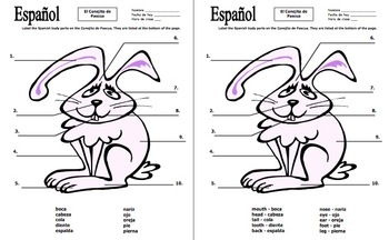 Spanish Easter Label the Easter Bunny Body Parts by Sue