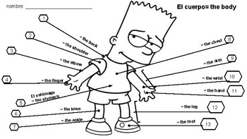 Spanish body parts worksheet by The Fun Language Classroom