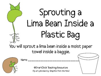 purchasing cycle diagram data wiring sprouting a lima bean plant in baggie lab packet by smart chick