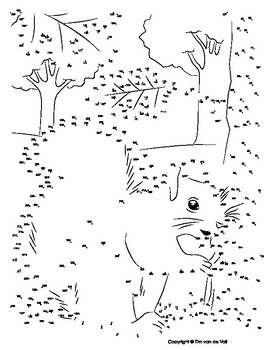 Squirrel Extreme Dot-to-Dot / Connect the Dot PDF by Tim's