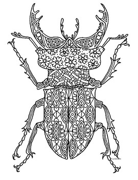 Stag Beetle Insect Zentangle Coloring Page by Pamela