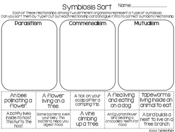 Symbiosis Sort And Comprehension Page By Tasteslikepaste