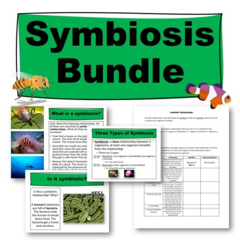 Symbiosis Worksheet By Science From Scratch