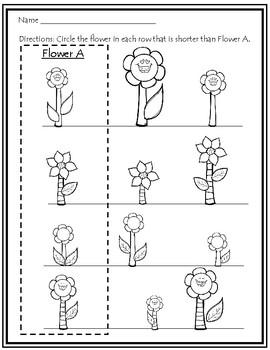 Tall, Taller, Tallest & Short, Shorter, Shortest ~ Flower