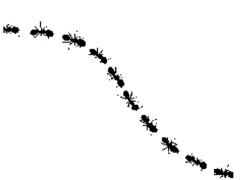 The Ants Go Marching sequencing pictures & retelling cards
